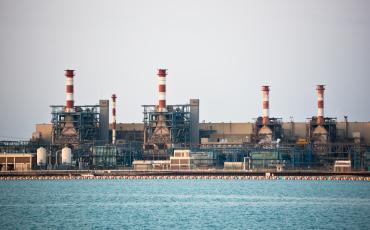 Petroleoquímicas internacionales como BOROUGE